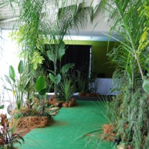 New Years Eve Jungle Green Plants Animal Print Corporate Events Event Management Geelong Melbourne Surf Coast