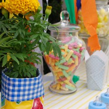 Surprise Baby Shower Bright Colours Stripes Lolly Buffet Scoop Chairs Baby Boy Oilcoth Private Party Planner Melbourne Geelong Surf Coast