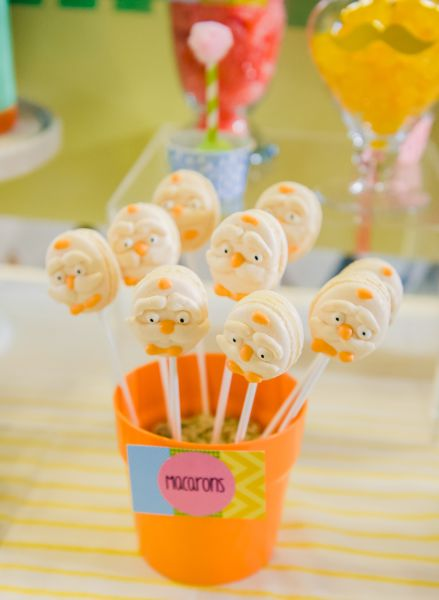 The Lorax Girls 1st Birthday Party. Party Planning Geelong (2)