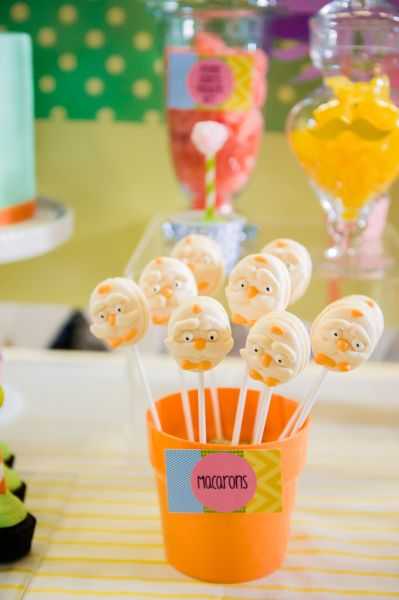 The Lorax Girls 1st Birthday Party. Party Planning Geelong (20)