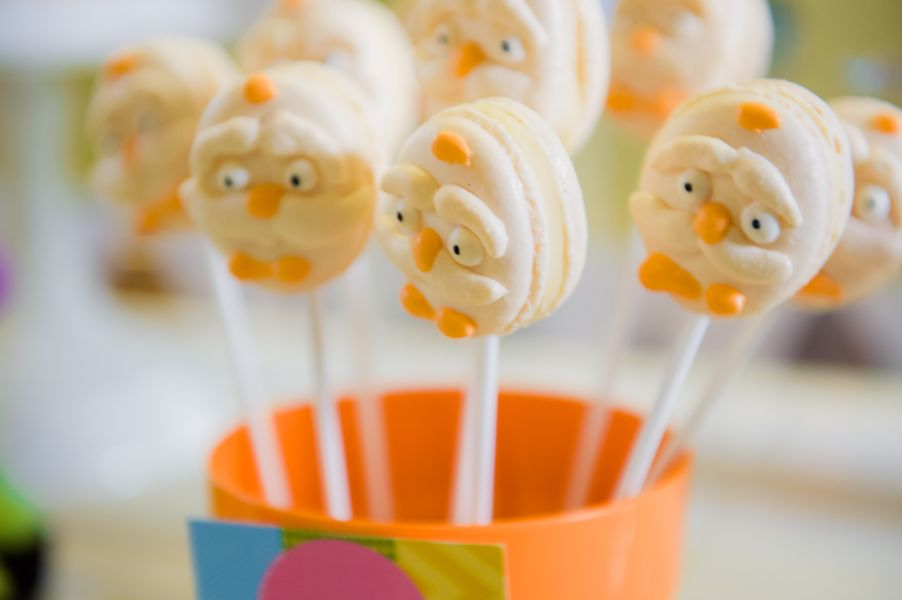 The Lorax Girls 1st Birthday Party. Party Planning Geelong (3)